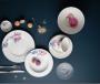 Bộ chén dĩa bàn ăn – Camellia – Trà mi - MNV - 481428428